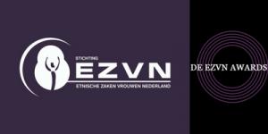 banner ezvn